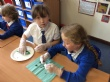 Year 3 Owl Pellets Dissection